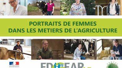 Photo de Portraits de femmes dans les métiers de l'agriculture